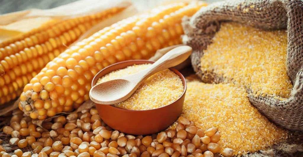 Кукурузный глютен от сорняков – действительно ли работает?