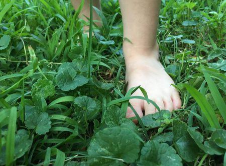 Босоногий ребенок идет по траве, нужно убрать осколки с участка.