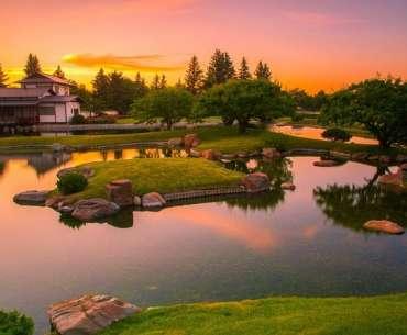 Японский сад на даче на закате.