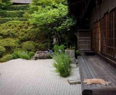 Оформление сад ав японском стиле.