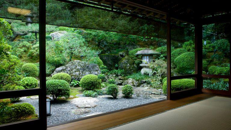 Японский сад своими руками на большом участке.