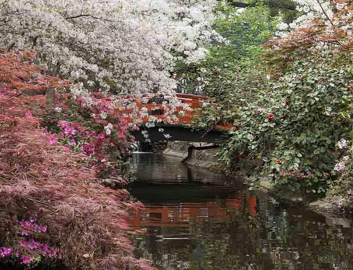 Полукруглый лунный мост для японского оформления сада.