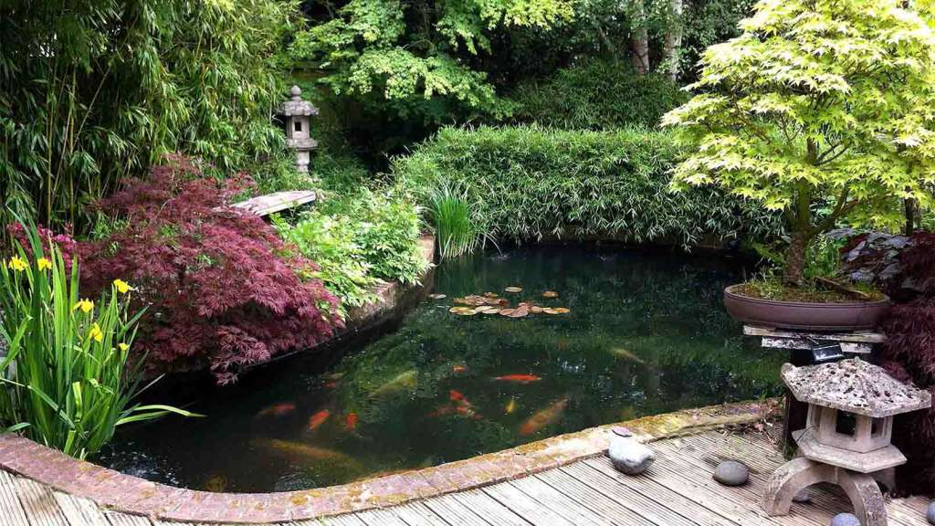 Японский сад своими руками с прудом.