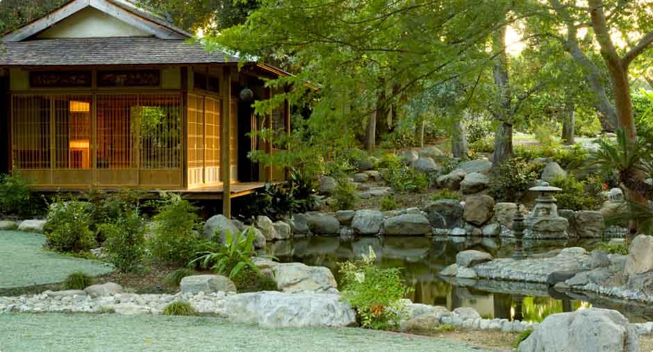 Японский сад на даче с чайным домиком.