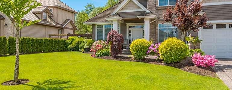 Как ухаживать за искусственным газоном у дома?